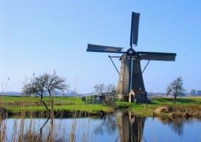 molino Holanda